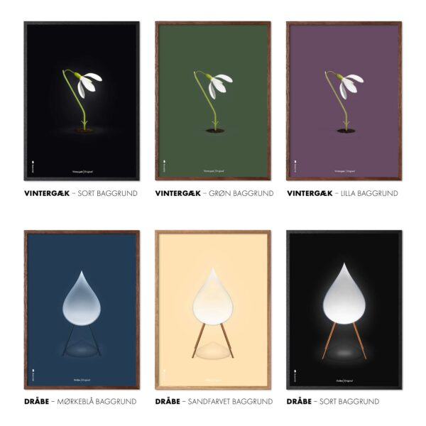 Snowdrop posters from Brainchild, The Snowdrop