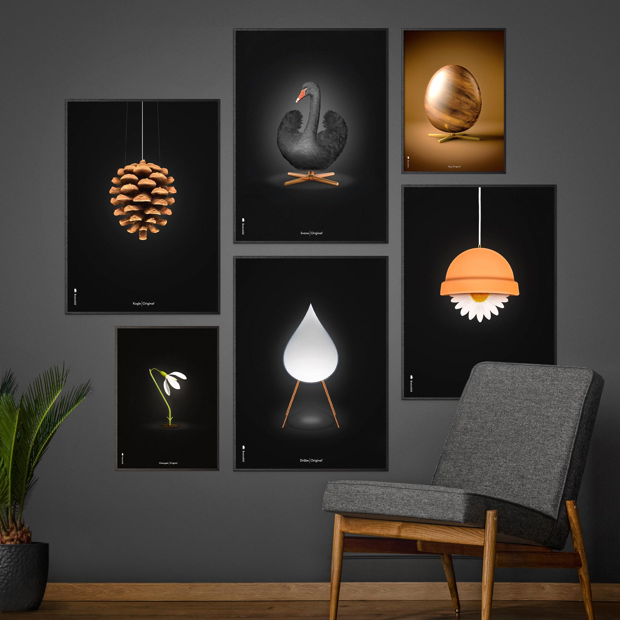 Picture wall with design posters from Brainchild